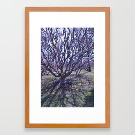 Sleepy Hollow Framed Art Print