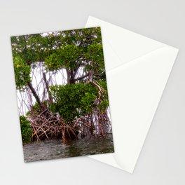 Mangrove Stationery Cards