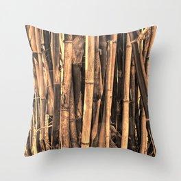 Bamboo in warm light Throw Pillow