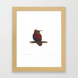 Snowcap Framed Art Print