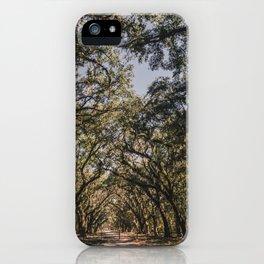 Wormsloe Live Oak Avenue - Savannah III iPhone Case