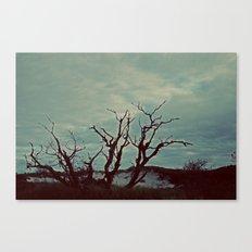 Nautica: Piercing Heavens Canvas Print