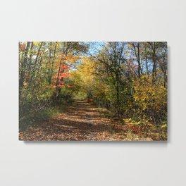 Autumn Blanket Metal Print
