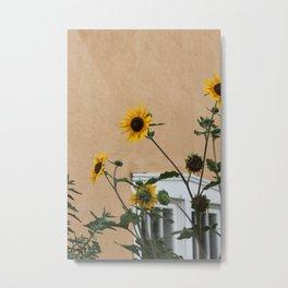 Santa Fe Sunflowers Metal Print