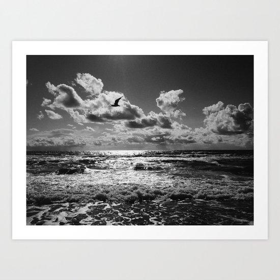 Seagull over sea Art Print