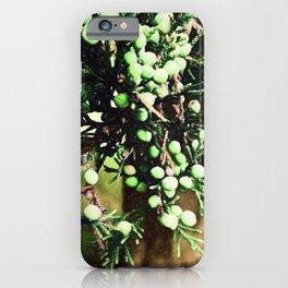 Pine Tree 3 iPhone Case