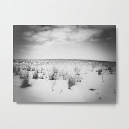 Winter 1 Metal Print