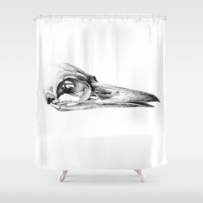 Crow Skull Shower Curtain