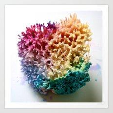 Sponge Art Print