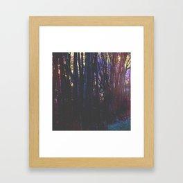 Twilight in Wonderland Framed Art Print