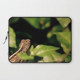 The Blurry Lizard in his Secret Garden Laptop Sleeve