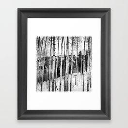 Aspen See Framed Art Print