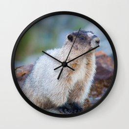 The Marmot Wall Clock