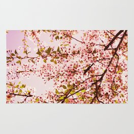 Pink Blossoms Rug