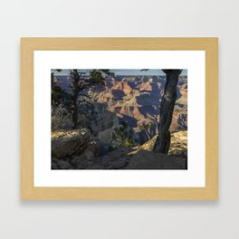 The Grand Canyon and Trees. Framed Art Print