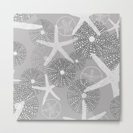 Sea Urchins, Sand Dollars & Starfish in Gray and White Hues Metal Print
