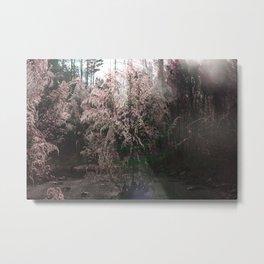 Arose from concrete Metal Print