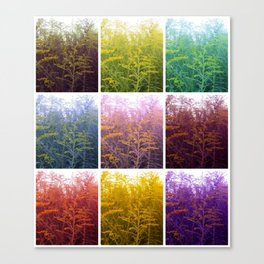 Goldenrod Collage Canvas Print