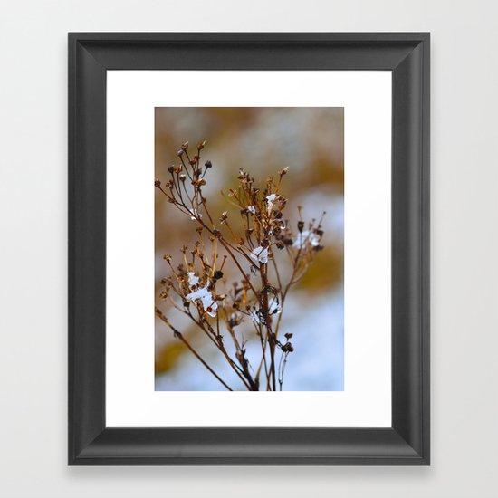 Frosty Days Framed Art Print