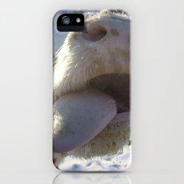 Kiss Me Beautiful iPhone Case