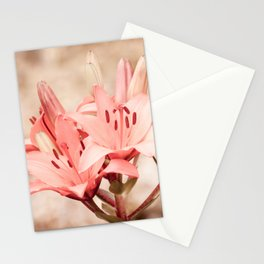 Flowering Lilium plant sepia toned Stationery Cards