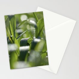 Spring Blades Stationery Cards