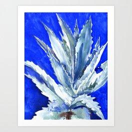 Blue Agave, Succulents, Blue Turquoise green plants design desert plants Art Print
