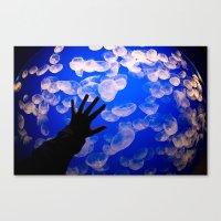life aquatic Canvas Prints featuring Life Aquatic by Michelle Fay