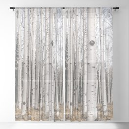 Trees of Reason - Birch Forest Sheer Curtain