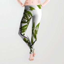 Green Rowan Leaves White Background #decor #society6 #buyart Leggings