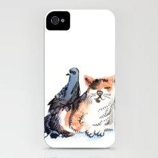Pigeon and Cat iPhone (4, 4s) Slim Case