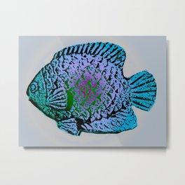 Sunfish Colors 4 Metal Print