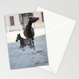 Fohlen Stationery Cards