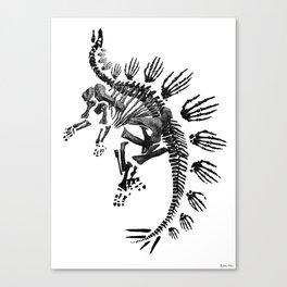 Stego Canvas Print