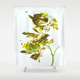 Small Green Crested Flycatcher Bird Shower Curtain