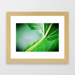 Make Like A Tree Framed Art Print