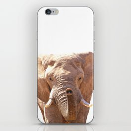 Elephant illustration iPhone Skin