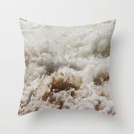 Frazer Throw Pillow