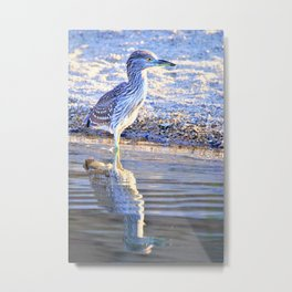 Juvenile Heron with Reflection by the Lake by Reay of Light Metal Print