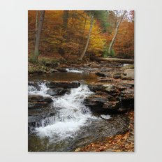 Small Fall Canvas Print
