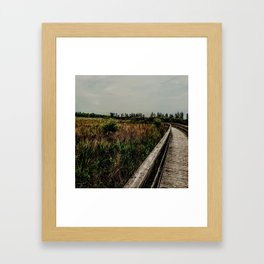 Peaceful walk Framed Art Print