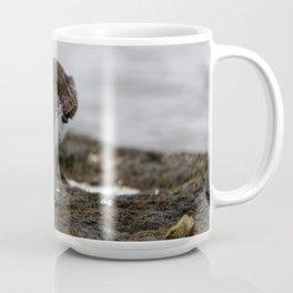 Dunlin Sandpiper | Wildlife Photography | Birds Coffee Mug