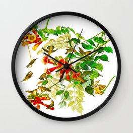 Ruby-throated Humming Bird Wall Clock