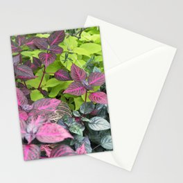 Longwood Gardens Autumn Series 313 Stationery Cards