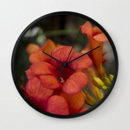 Bignonia Flowers. Photography . Wall Clock