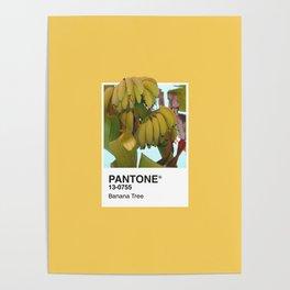 PANTONE SERIES – BANANA TREE Poster