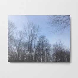 Through the Trees Metal Print