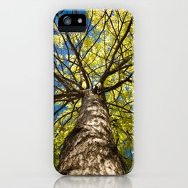 Blue and Green iPhone Case