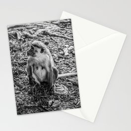 Toque Macaque Monkey Stationery Cards
