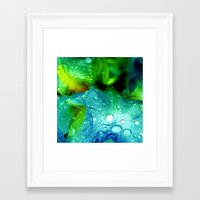 splash Framed Art Prints featuring Splash by Stephanie Koehl